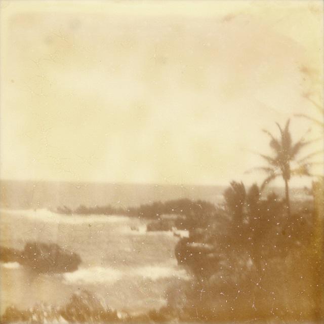 Hali'a Aloha VIII