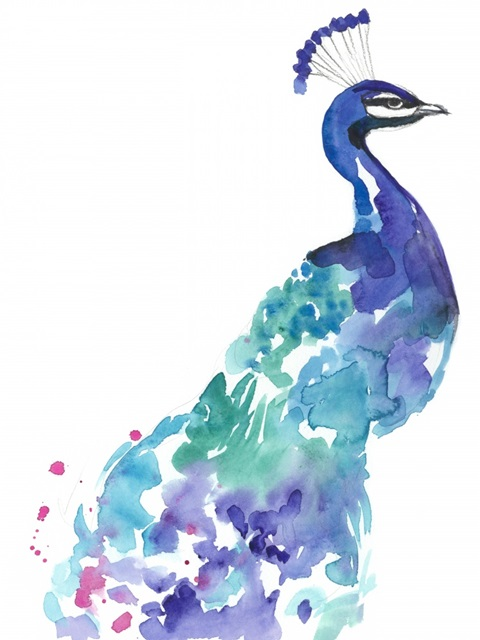Peacock Splash I