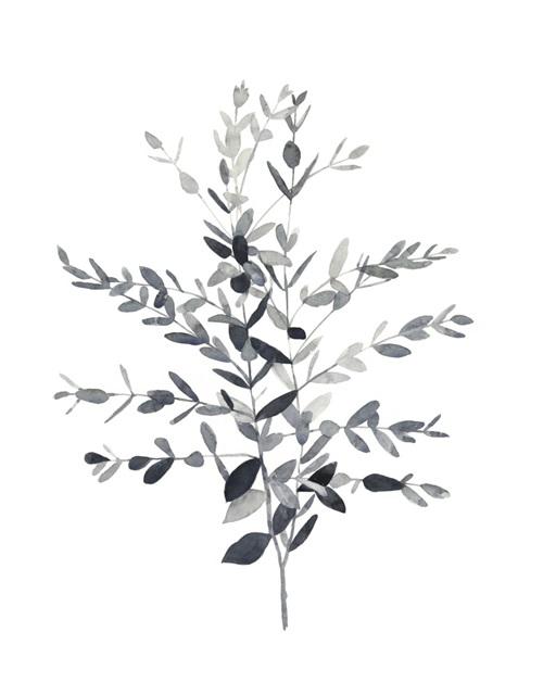 Paynes Grey Botanicals II