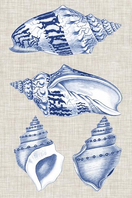 Navy and Linen Shells II