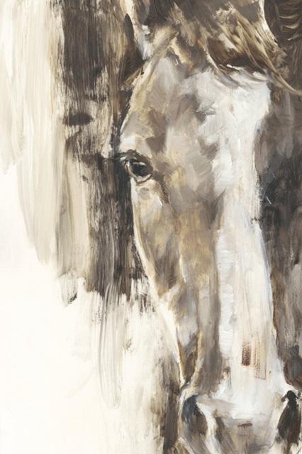 Cropped Equine Study I