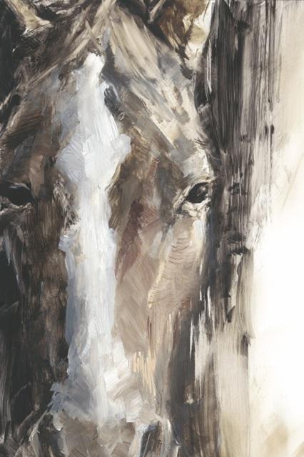 Cropped Equine Study II