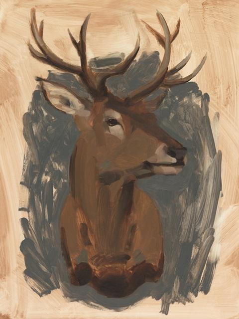 Red Deer Stag I