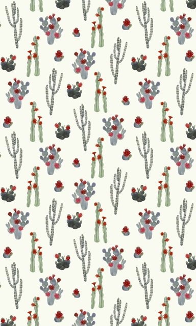 Flowering Christmas Cactus Collection E