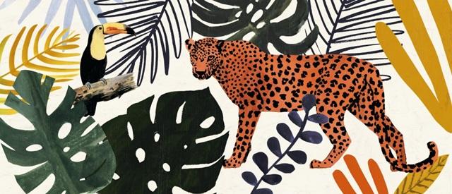 Jungle Jumble Collection D