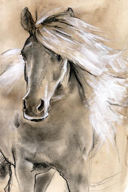 Sketched Horse I