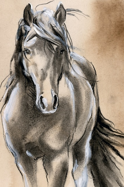 Sketched Horse II