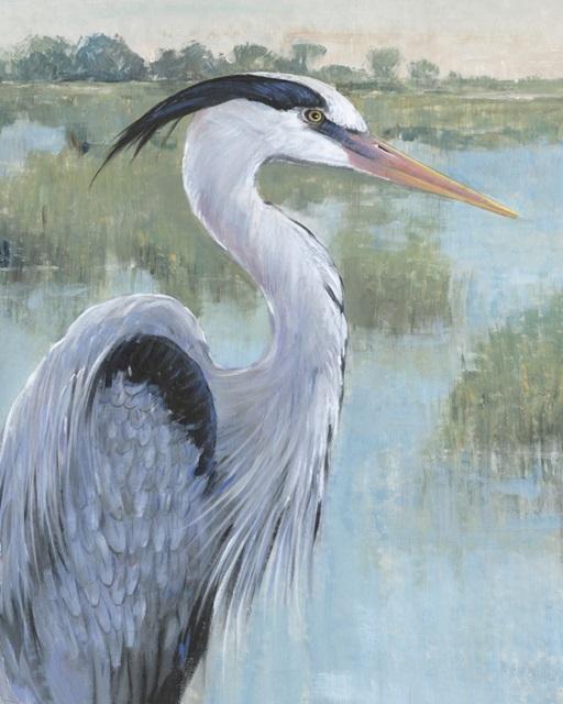 Blue Heron Portrait II