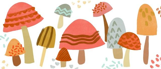 Cupcake Mushrooms Collection D