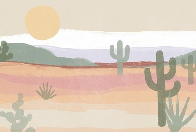 Cactus Plateau Collection A