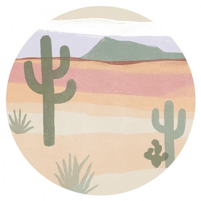 Cactus Plateau Collection C