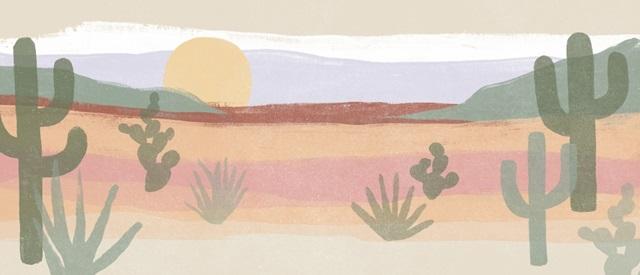 Cactus Plateau Collection D