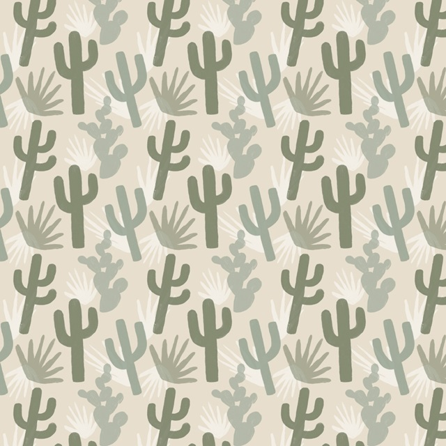 Cactus Plateau Collection F