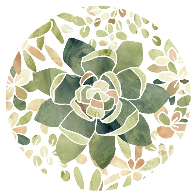 Stained Glass Succulents Collection C