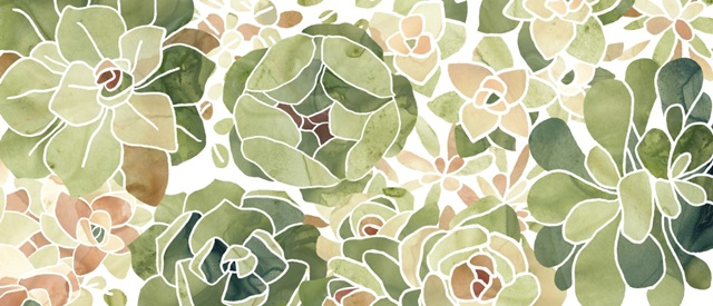 Stained Glass Succulents Collection D