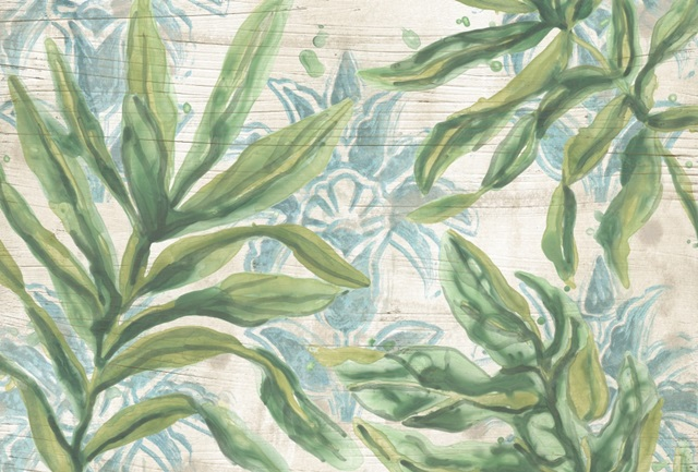 Palms & Patterns Collections A