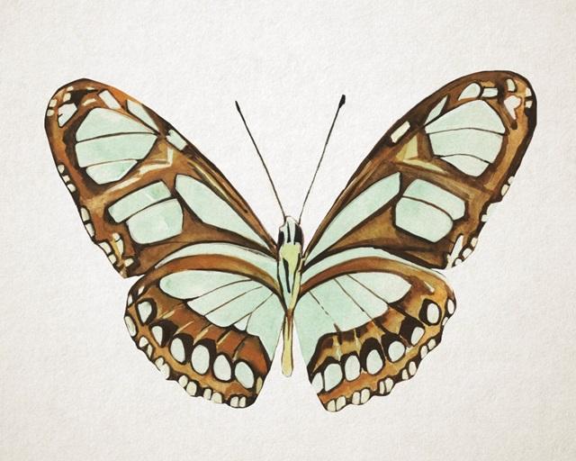 Mint Butterfly I