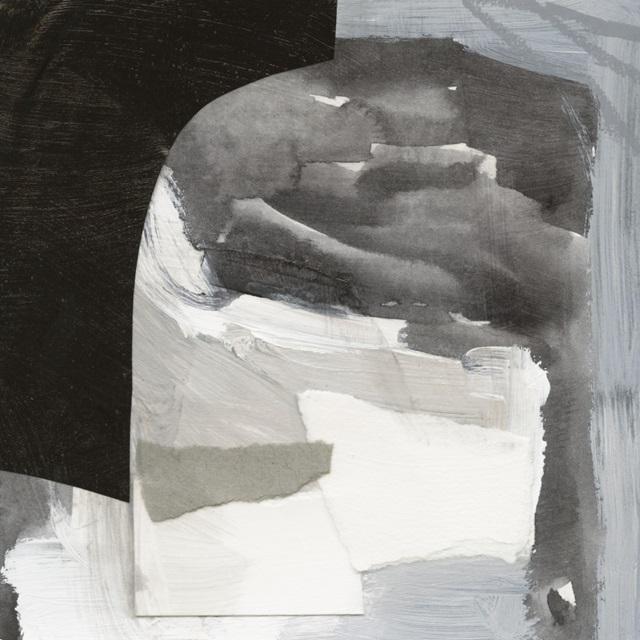 Monochrome Remnants I