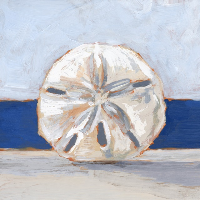 Sand Dollar By the Sea